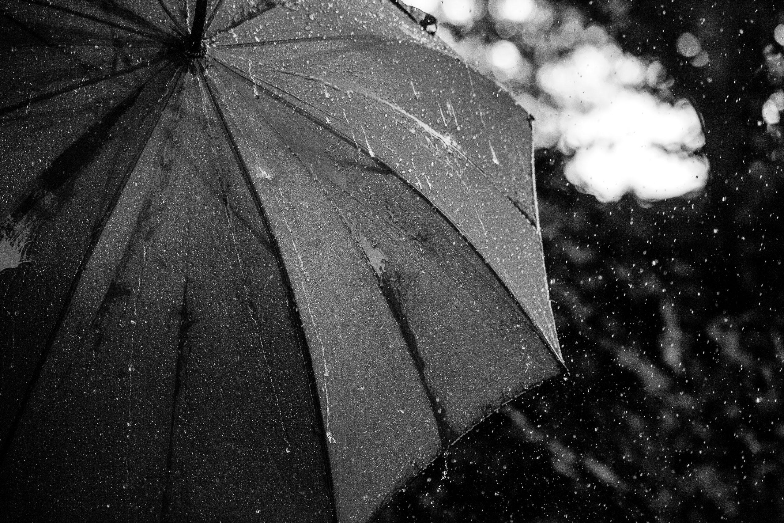 プレゼントにも最適!威張れるメンズの高級傘~ビニール傘におさらば~